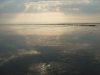 wadlopen-3-juli-2010-081